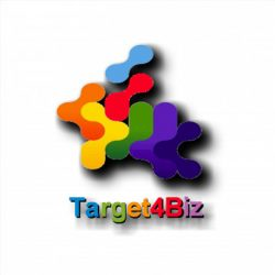 Target4Biz - marketing digital - seo - website - loja online